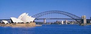 Large-Sydney-Branch