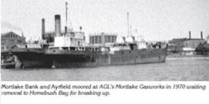 SS Aryfield Then (from afloat.com.au)