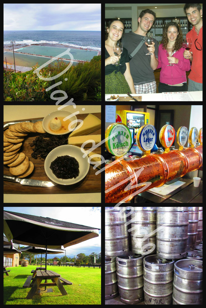 Ribbet collage3