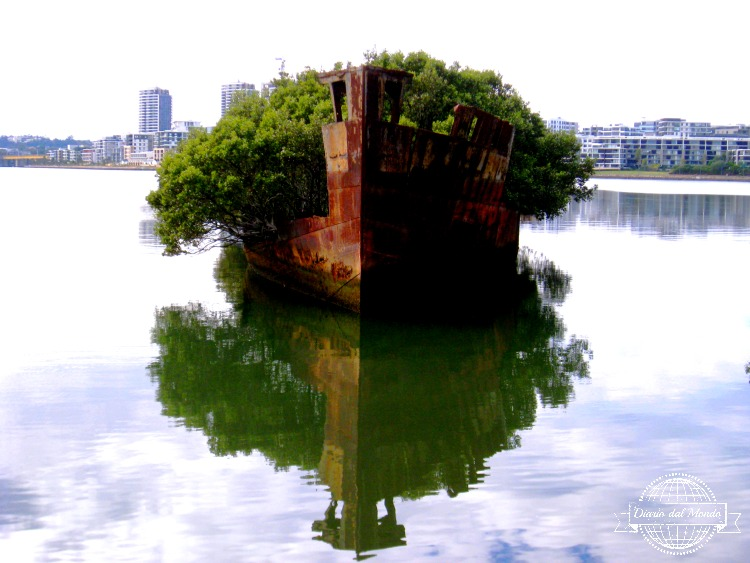 Homebush shipwreck diario dal mondo